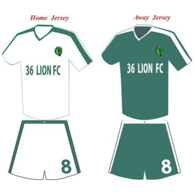Set of 36 Lion's Jersey